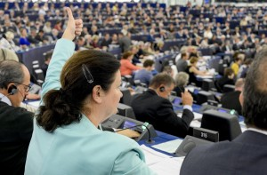 Constanze KREHL in plenary session week 19 2016 in Strasbourg during the votes